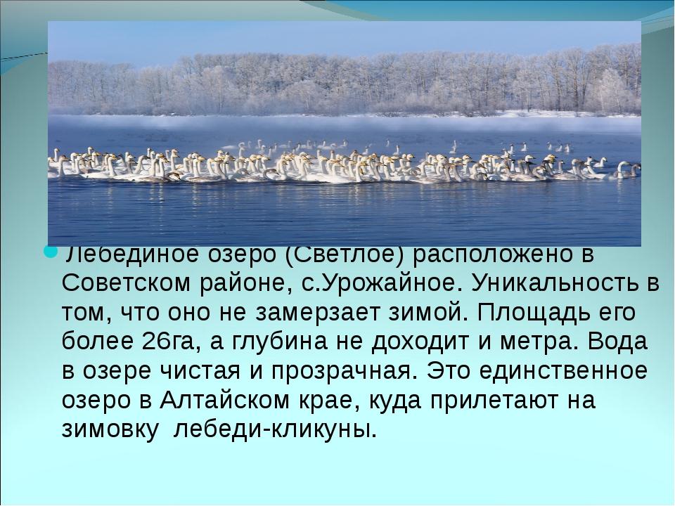 Лебединое озеро (Светлое) расположено в Советском районе, с.Урожайное. Уника...