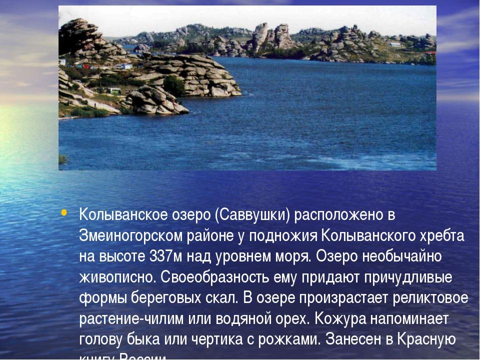 Колыванское озеро (Саввушки) расположено в Змеиногорском районе у подножия К...