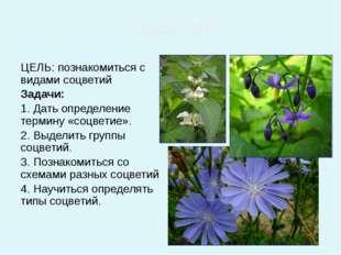 ЦЕЛЬ: познакомиться с видами соцветий Задачи: 1. Дать определение термину «с