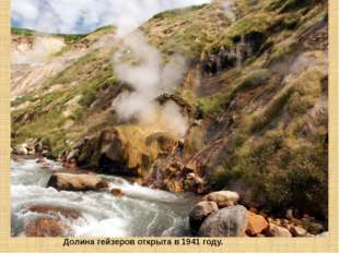 Долина гейзеров открыта в 1941 году.