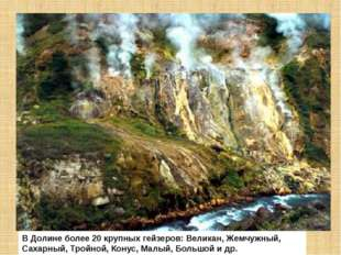 В Долине более 20 крупных гейзеров: Великан, Жемчужный, Сахарный, Тройной, Ко