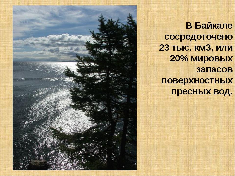 В Байкале сосредоточено 23 тыс. км3, или 20% мировых запасов поверхностных пр...