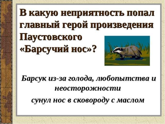 В какую неприятность попал главный герой произведения Паустовского «Барсучий...