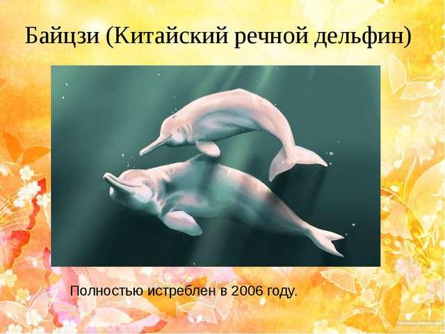 Байцзи (Китайский речной дельфин) Полностью истреблен в 2006 году.