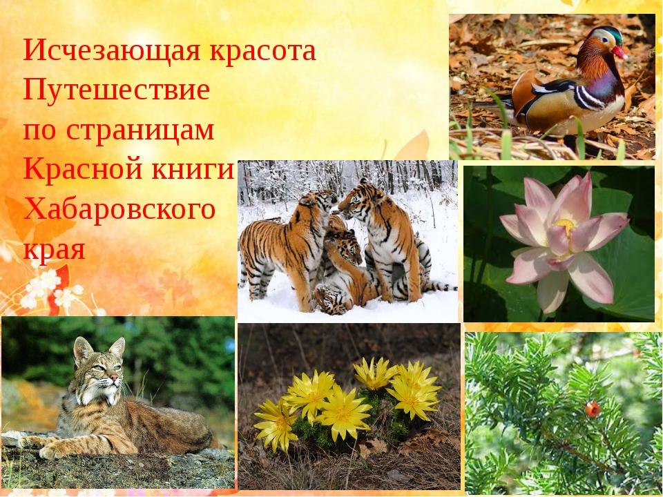 Исчезающая красота Путешествие по страницам Красной книги Хабаровского края