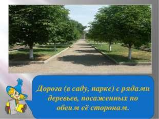 Дорога (в саду, парке) с рядами деревьев, посаженных по обеим её сторонам.