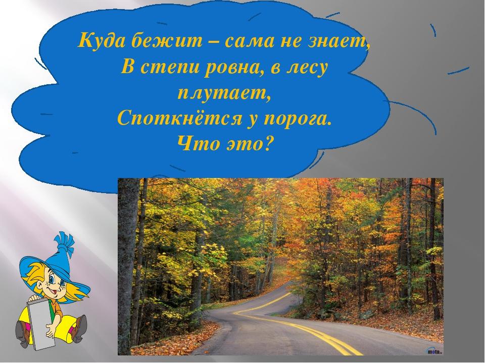 Куда бежит – сама не знает, В степи ровна, в лесу плутает, Споткнётся у порог...