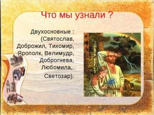 Что мы узнали ? Двухосновные : (Святослав, Доброжил, Тихомир, Ярополк, Велиму