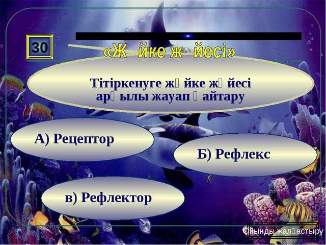 в) Рефлектор Б) Рефлекс А) Рецептор 30 Тітіркенуге жүйке жүйесі арқылы жауап...