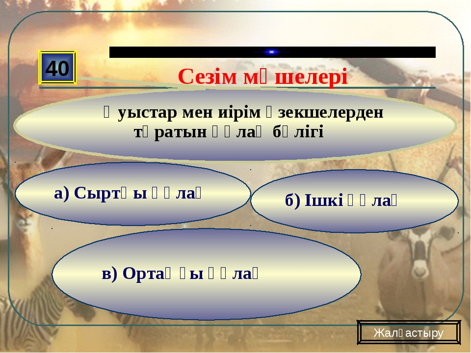 в) Ортаңғы құлақ б) Ішкі құлақ а) Сыртқы құлақ 40 Қуыстар мен иірім өзекшелер...