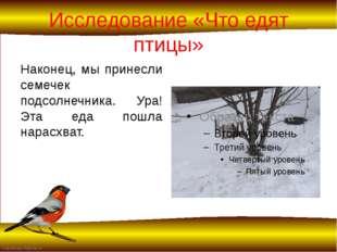 Исследование «Что едят птицы» Наконец, мы принесли семечек подсолнечника. Ура