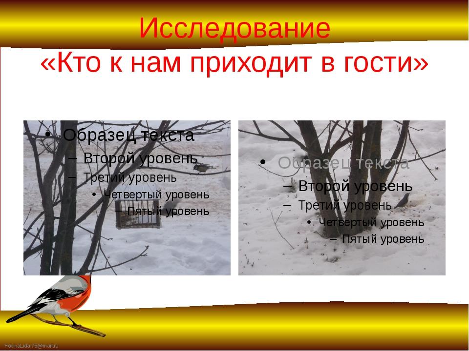 Исследование «Кто к нам приходит в гости» FokinaLida.75@mail.ru