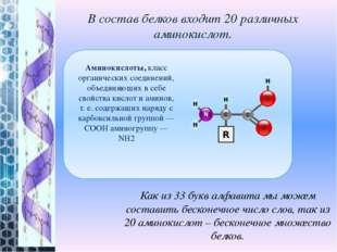 В состав белков входит 20 различных аминокислот. Как из 33 букв алфавита мы м
