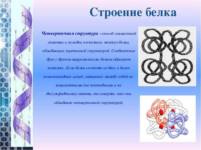 Четвертичная структура–способ совместной упаковки и укладки нескольких молек...
