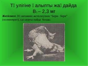 """Тәулігіне қалыпты жағдайда В1 – 2,3 мг Жетіспесе: В1 витамині жетіспеуінен """"Б"""
