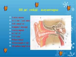 III деңгейдің жауаптары 1-есту жолы 2-құлақ қалқаны 3-бұлшықет 4-иірім өзект