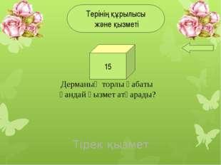 3. Өңештің ұзындығы қанша?