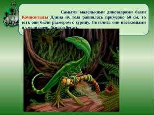 Самыми маленькими динозаврами были Компсогнаты Длина их тела равнялась приме