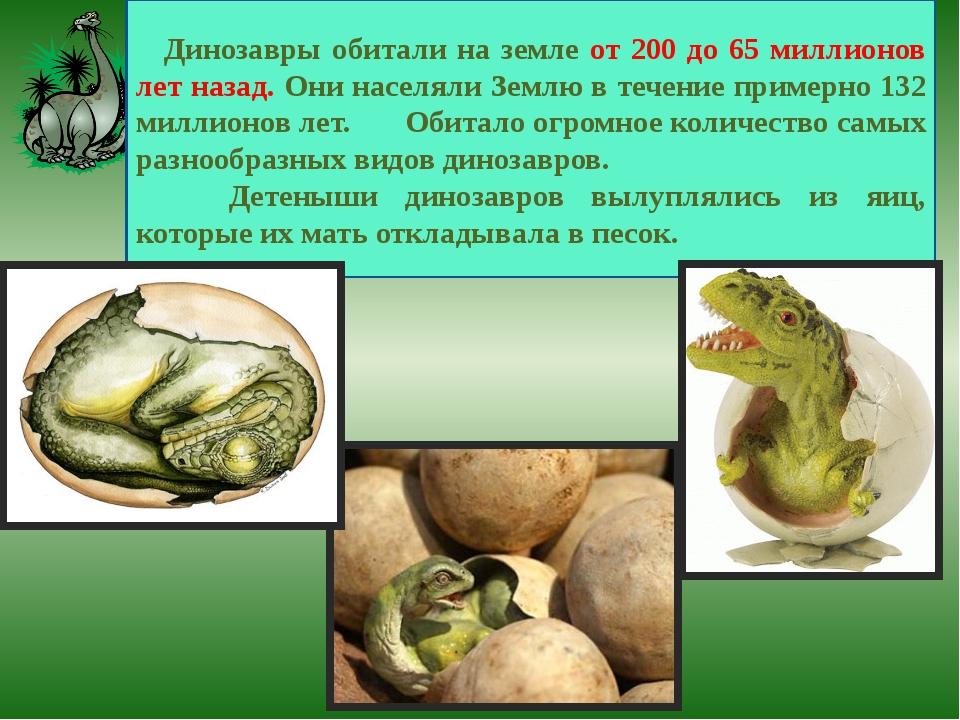 Динозавры обитали на земле от 200 до 65 миллионов лет назад. Они населяли Зем...