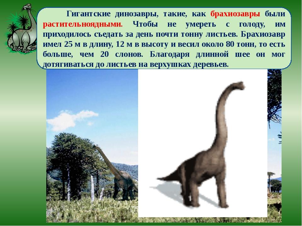Гигантские динозавры, такие, как брахиозавры были растительноядными. Чтобы н...