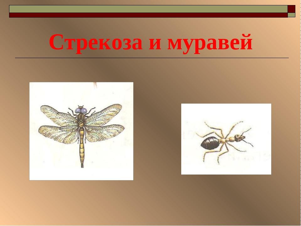 крылов муравей и стрекоза картинки