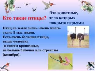 Птиц на земле очень- очень много- около 9 тыс. видов. Есть очень большие птиц