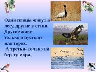Одни птицы живут в лесу, другие в степи. Другие живут только в пустыне или го