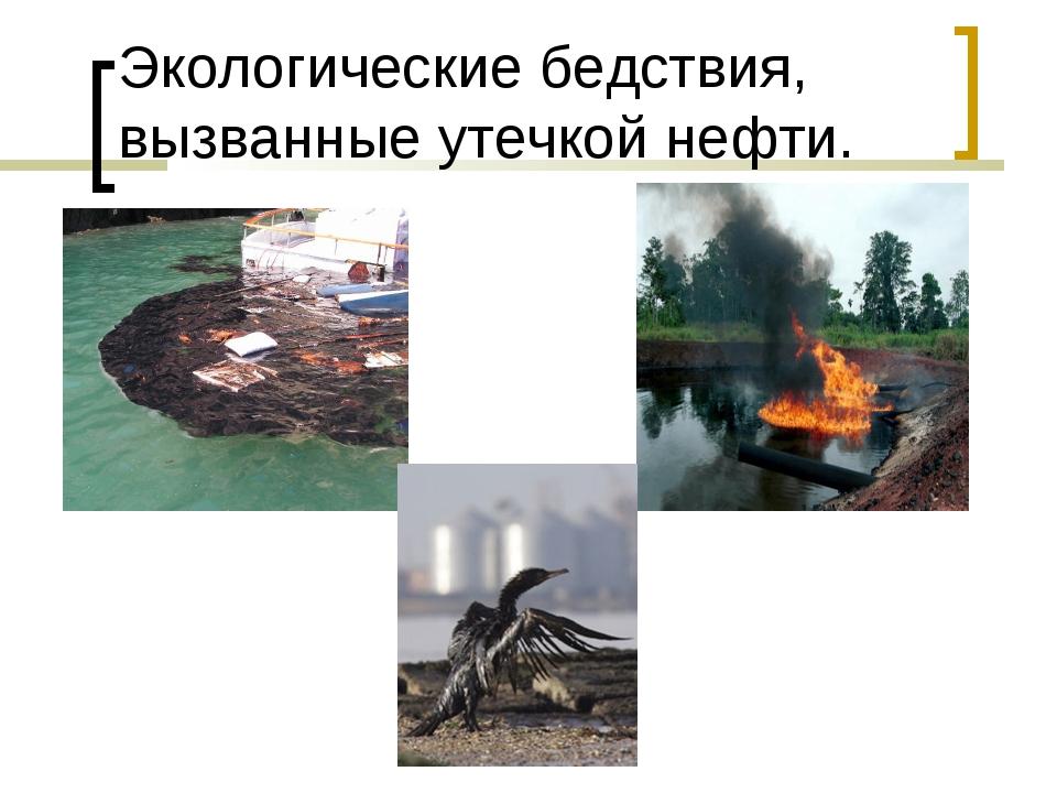 Экологические бедствия, вызванные утечкой нефти.