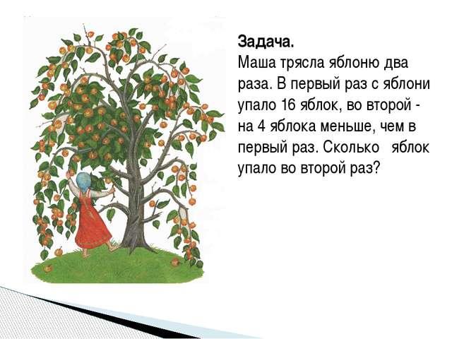 Задача. Маша трясла яблоню два раза. В первый раз с яблони упало 16 яблок, во...