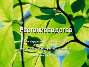 Растениеводство Урок Окружающего мира в 3 классе «УМК Школа России» Автор: Г