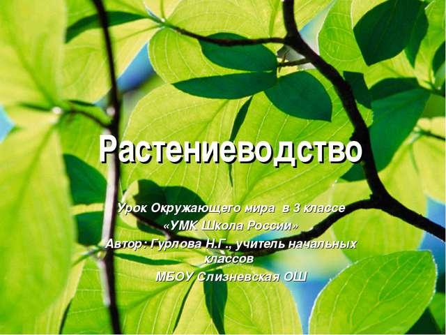 Растениеводство Урок Окружающего мира в 3 классе «УМК Школа России» Автор: Г...