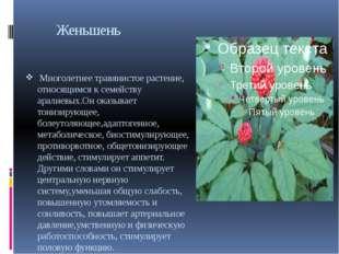 Женьшень Многолетнее травянистое растение, относящимся к семейству аралиевых