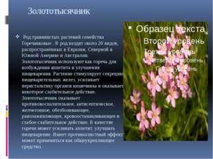 Золототысячник Род травянистых растений семейства Горечавковые . В род входя