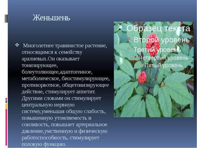 Женьшень Многолетнее травянистое растение, относящимся к семейству аралиевых...