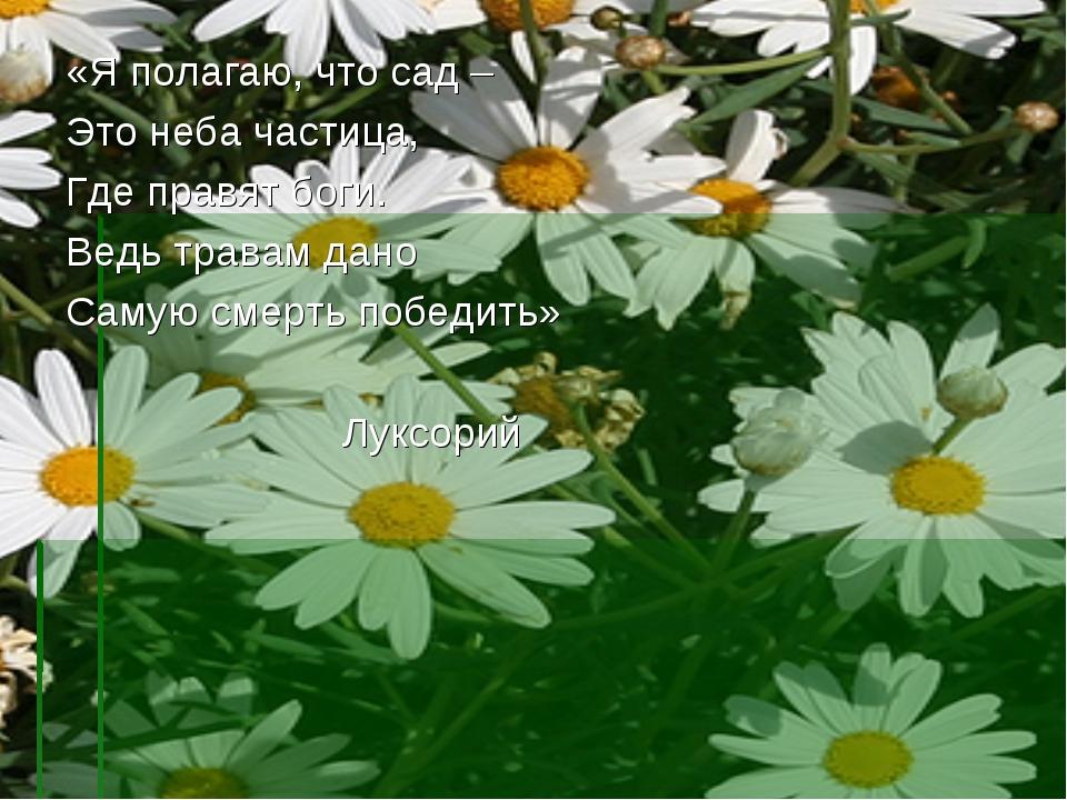 «Я полагаю, что сад – Это неба частица, Где правят боги. Ведь травам дано Сам...