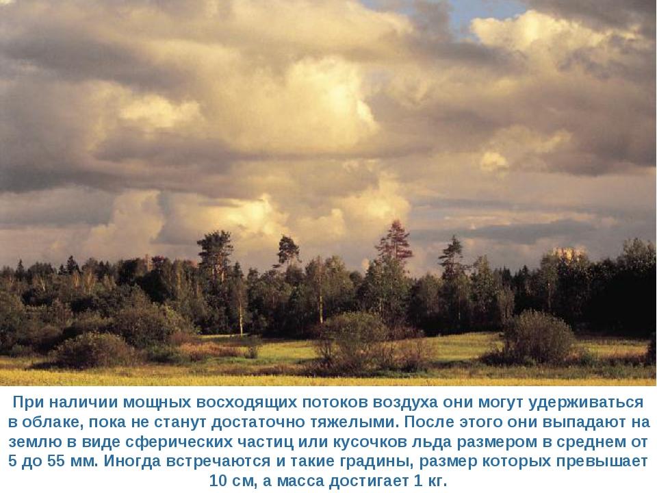 При наличии мощных восходящих потоков воздуха они могут удерживаться в облаке...