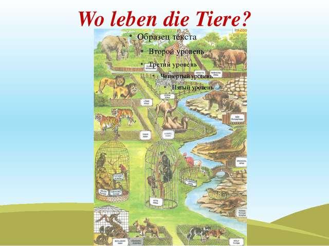 Wo leben die Tiere?