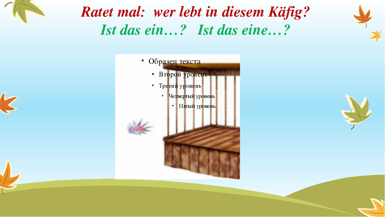 Ratet mal: wer lebt in diesem Käfig? Ist das ein…? Ist das eine…?