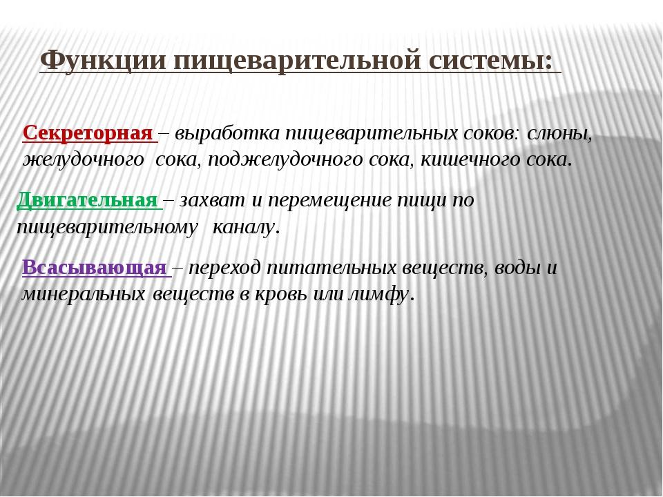 Функции пищеварительной системы: Секреторная – выработка пищеварительных сок...
