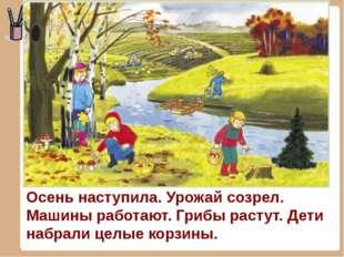 Осень наступила. Урожай созрел. Машины работают. Грибы растут. Дети набрали ц