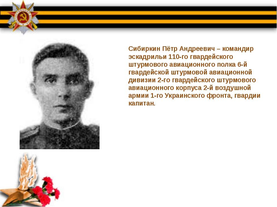 Сибиркин Пётр Андреевич – командир эскадрильи 110-го гвардейского штурмового...
