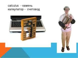 calculus - камень калкулатор - счетовод