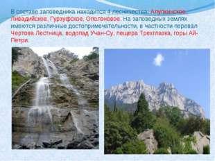 В составе заповедника находится 4 лесничества: Алупкинское, Ливадийское, Гурз