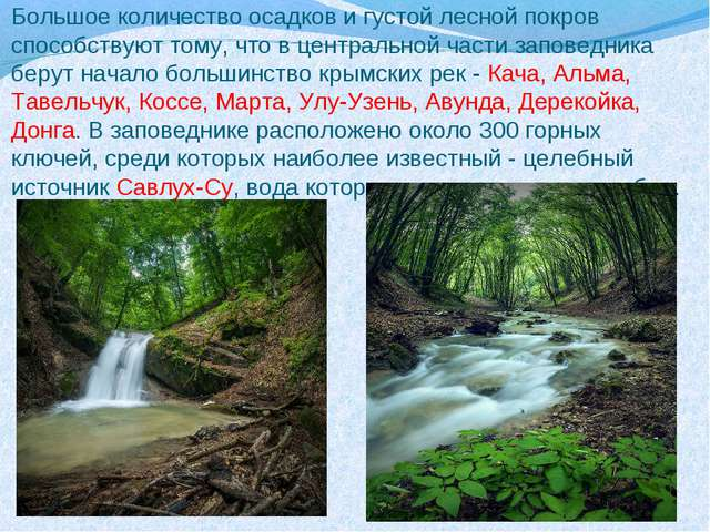 Большое количество осадков и густой лесной покров способствуют тому, что в це...