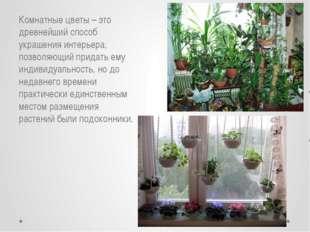 Комнатные цветы – это древнейший способ украшения интерьера, позволяющий при