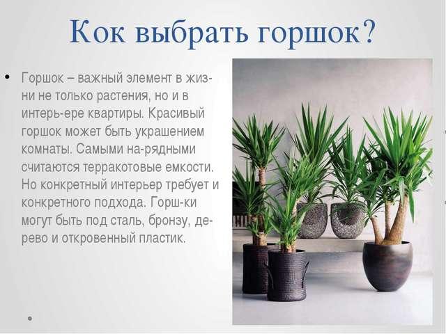 Кок выбрать горшок? Горшок – важный элемент в жизни не только растения, но и...