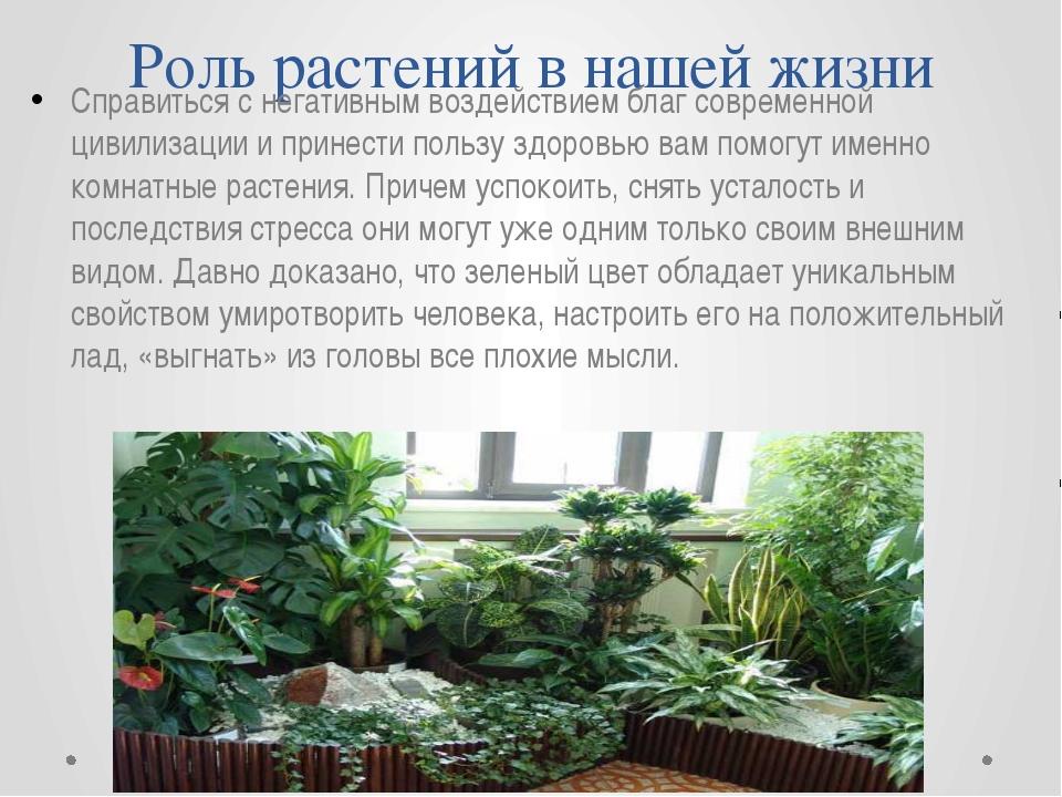 Роль растений в нашей жизни Справиться с негативным воздействием благ совреме...