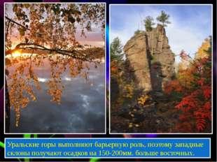 Уральские горы выполняют барьерную роль, поэтому западные склоны получают ос
