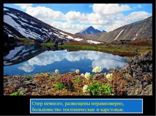 Озер немного, размещены неравномерно, большинство тектонические и карстовые.