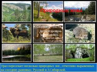Природные зоны Урал пересекает несколько природных зон , отчетливо выраженны